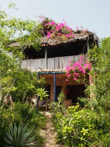 Blue Monkey Beach Cottage