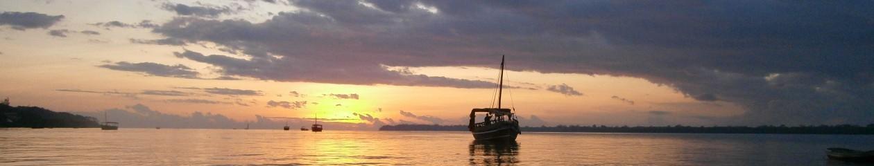 Wasini Island's Travel, Tour & Accommodation Guide