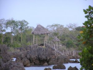 "Conservation Project ""Coral Garden"" with Boardwalk"